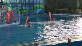 Delfino del naso della bottiglia di volo alla manifestazione dell'acqua Fotografia Stock Libera da Diritti