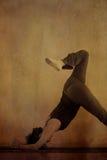 Delfino di yoga Immagini Stock