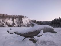 Delfino sotto neve sul lago di inverno immagine stock libera da diritti