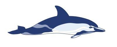 Delfino su un fondo bianco Immagine Stock