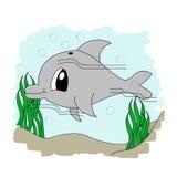 Delfino sveglio immagini stock