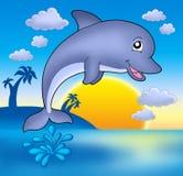 Delfino sveglio con il tramonto Fotografie Stock Libere da Diritti