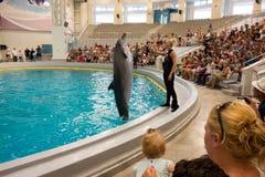 Delfinu doskakiwanie przy dolphinarium Zdjęcia Stock
