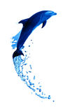 Delfinu Wysoki skok Obrazy Stock