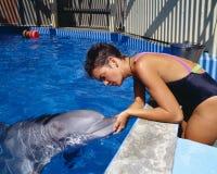 Delfinutbildning på sex flaggor magiskt berg, Valencia, Kalifornien Royaltyfri Foto
