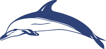 delfinvektor Royaltyfri Bild