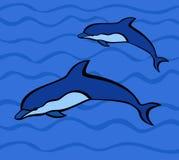 delfiny Fotografia Royalty Free