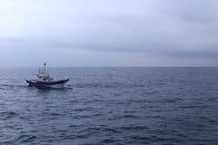 Delfiny i drewniany łódkowaty ścigać się Fotografia Stock