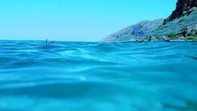 Delfiny Pływa przy Makua Dolinnym podwodnym strąkiem zbiory