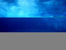 delfiny podwodne Obrazy Royalty Free