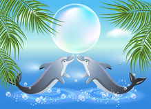 Delfiny przeskakują od wody Zdjęcia Royalty Free