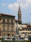 delfirenze fontana italia nettuno Royaltyfri Bild