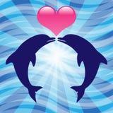 Delfínes del amor Fotos de archivo