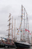 Delfsail Stock Photography