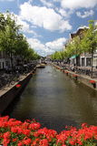 Delft stock afbeelding
