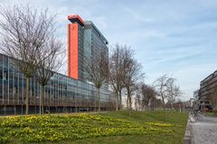 Campus Technical University Delft with buildings and field of narcissus Royalty Free Stock Images