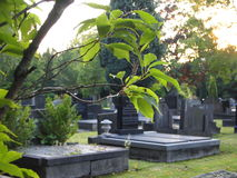 Peaceful cemetery Royalty Free Stock Photography