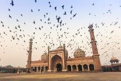 delhi ind jama masjid stary zdjęcia royalty free
