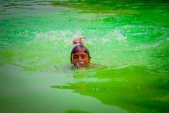 Delhi, la India - 16 de septiembre de 2017: Natación india no identificada del muchacho y el jugar en el agua, agua verde en una  Foto de archivo libre de regalías