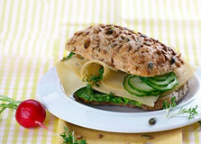 Deli Cheese Sandwich Stock Images