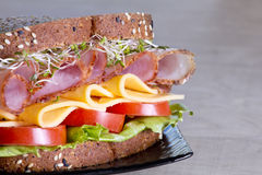 Deli meat sandwich with turkey Stock Images