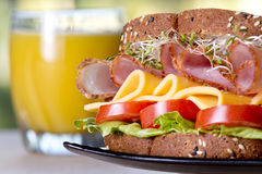 Deli meat sandwich with turkey Royalty Free Stock Photo