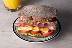 Deli meat sandwich with turkey Royalty Free Stock Photography