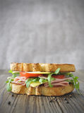 Deli sandwich stock image