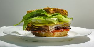 Deli sandwich on a plate with luscious filling. Close up of a deli sandwich served on a white plate against a gray background. The slices of bread are filled stock images