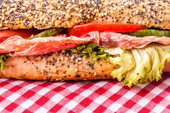 Deli style sandwich Royalty Free Stock Photography