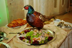 A delicacy from the chef - a dish of poultry - the bird with the prunes. Royalty Free Stock Photography