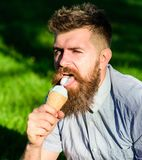 Delicacy concept. Man with long beard eats ice cream, while sits on grass. Bearded man with ice cream cone. Man with. Beard and mustache on face licks ice cream stock photos