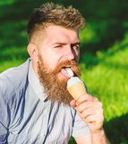 Delicacy concept. Man with long beard eats ice cream, while sits on grass. Bearded man with ice cream cone. Man with. Beard and mustache on face licks ice cream stock photography