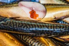 Delicacy fish Stock Photos