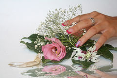 The delicacy of the flowers. Stock Photography