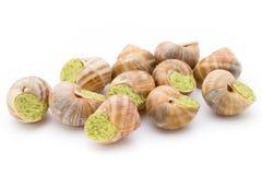 delicadeza cocinada de los caracoles Caracoles rellenos cocina francesa Imágenes de archivo libres de regalías