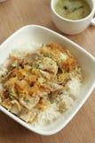Delicadeza oriental - pollo Katsu Don fotografía de archivo