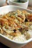 Delicadeza oriental - pollo Katsu Don Fotografía de archivo libre de regalías
