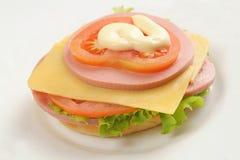 Delicadezas del queso Fotos de archivo