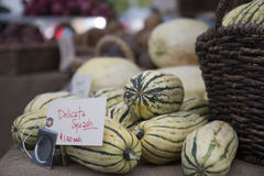 Delicata Squash. For sale at a farmer's market stock photo