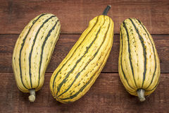 Delicata winter squash Royalty Free Stock Photography