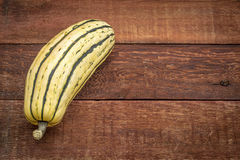 Delicata winter squash. Against rustic red painted wood barn table with a copy space Royalty Free Stock Photography