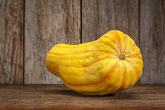Delicata winter squash against rustic wood. Fall holidays decoration royalty free stock image