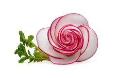Delicate, appetizing rose of thin circles of radish with a green sprig stock image