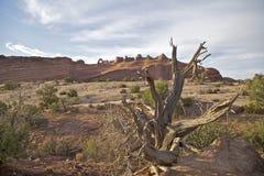 Delicate Arch Landscape Arches N.P. Utah Stock Images