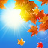 Delicate autumn sun with glare on blue sky. Royalty Free Stock Photography