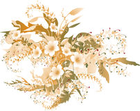 Delicate autumnal flowers. Delicate autumnal floral background. (Illustration Stock Photography
