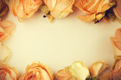 Delicate background with faded roses in vintage style Stock Images