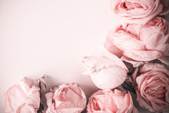 Delicate background with faded roses in vintage style Stock Photography