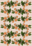 Delicate background with garlands of orange roses Royalty Free Stock Image